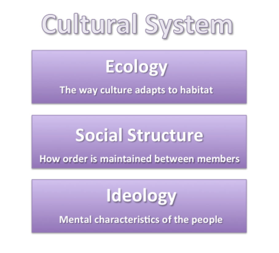 CONSUMERS AND CULTURE CULTURAL INFLUENCES ON CONSUMER
